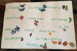 Sea Sticker Sorting